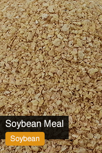 Product Soybean Meal Yellowrock