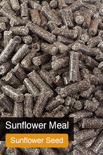 Product Sunflower Meal Yellowrock