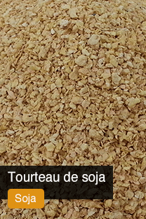 Produit Tourteau de Soja Yellowrock